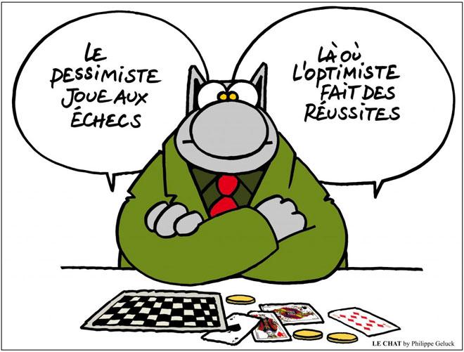 Le chat francophone