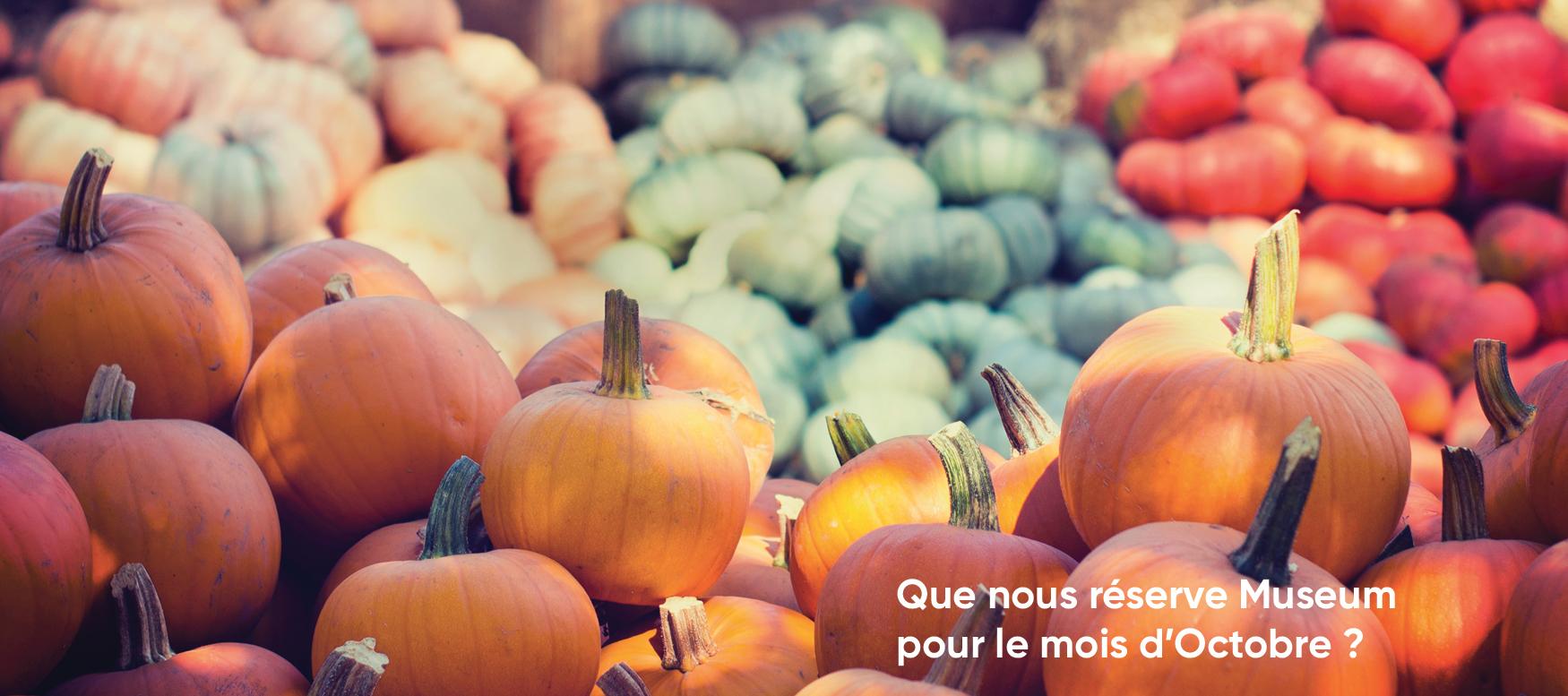 Banniere-site-octobre